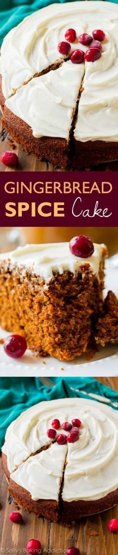 Moist Gingerbread Spice Snack Cake