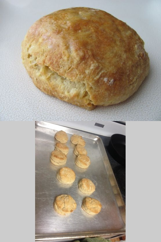 Grandma's Sourdough Biscuits