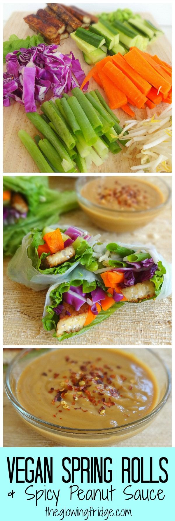 Spring Rolls with a Spicy Peanut Sauce