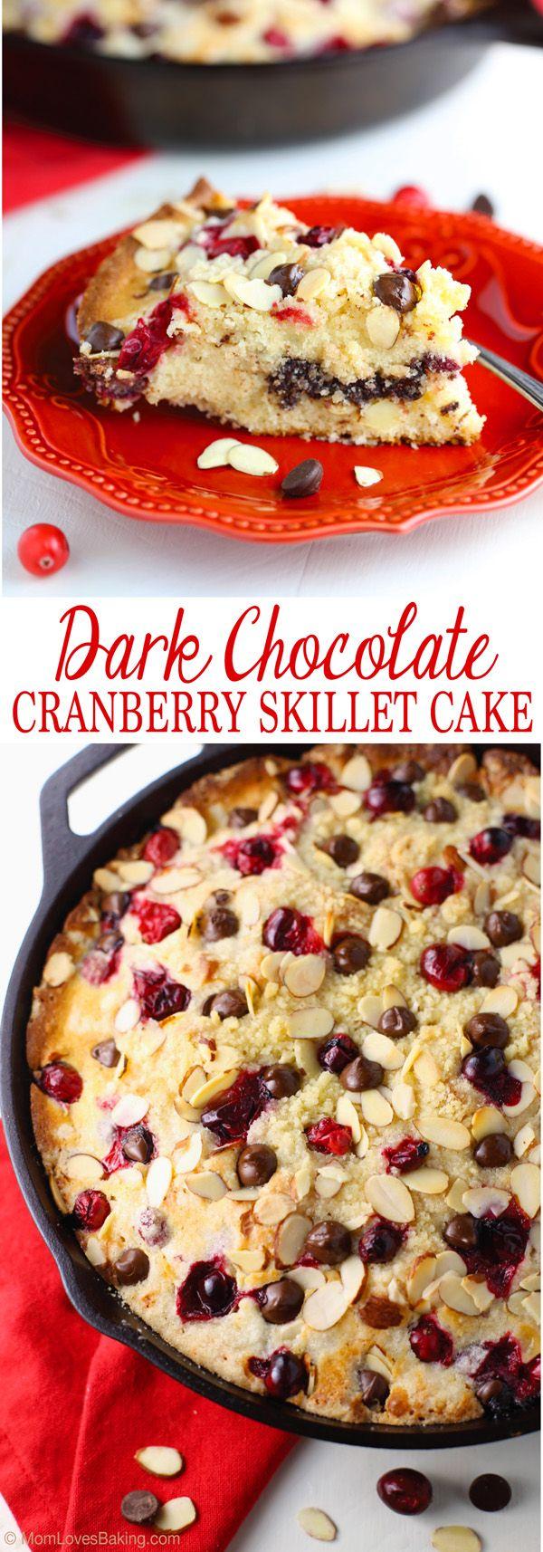 Dark Chocolate Cranberry Skillet Cake