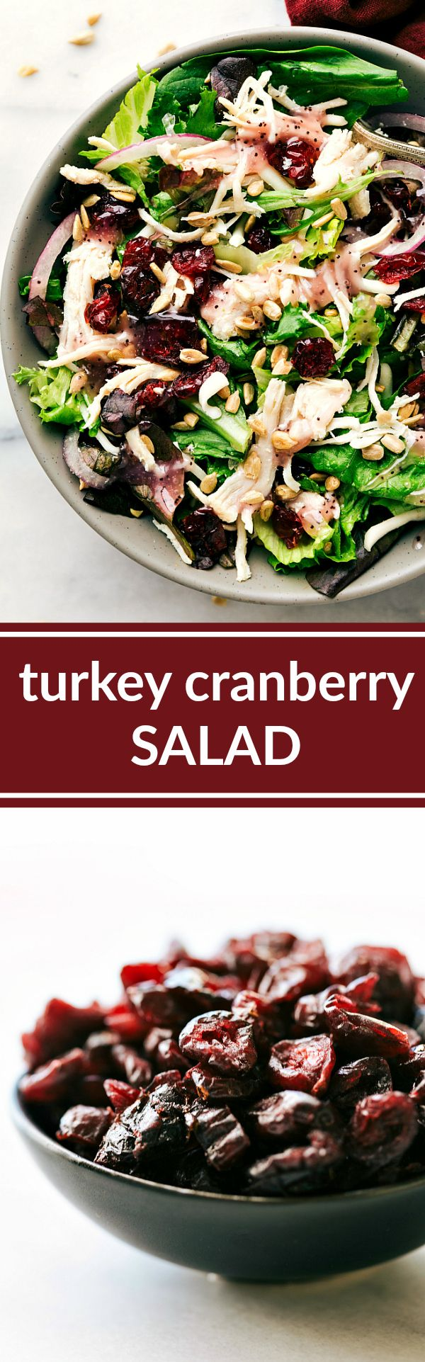 Turkey, Cranberry, and Sunflower Seed Salad (Kneader's Copycat