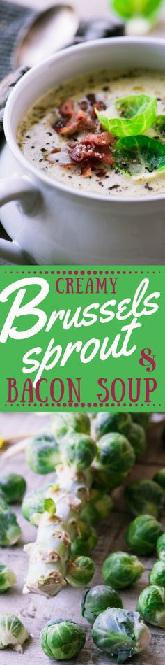 Creamy Brussels Sprout and Bacon Soup