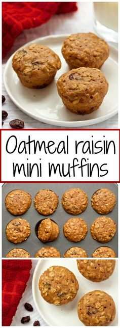 Mini oatmeal raisin toddler muffins