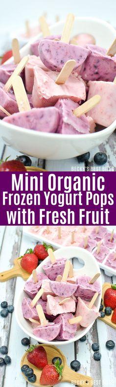 Mini Organic Frozen Yogurt Pops with Fresh Fruit
