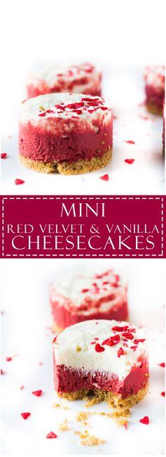 Mini Red Velvet and Vanilla Cheesecakes