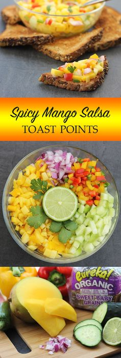 Spicy Mango Salsa Toast Points