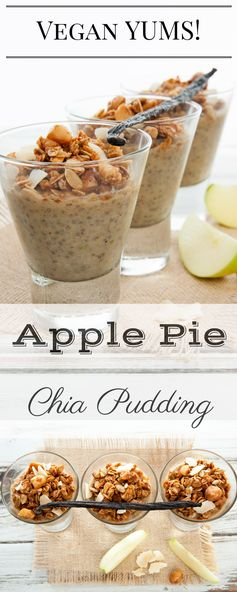Apple Pie Chia Pudding – Super Food Breakfast