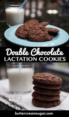 Homemade Double Chocolate Lactation Cookies