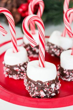 Peppermint and Chocolate Covered Marshmallows