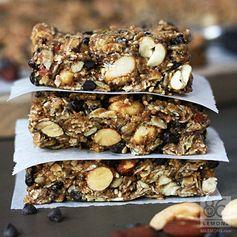Chocolate Peanut Butter Breakfast Bars (vegan, gf