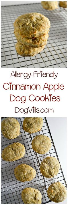 Homemade Hypoallergenic Apple Cinnamon Dog Cookies